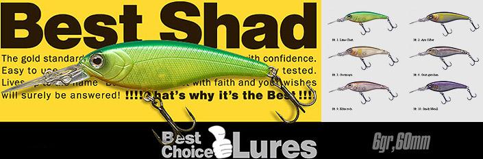 Fish Arrow Best Shad