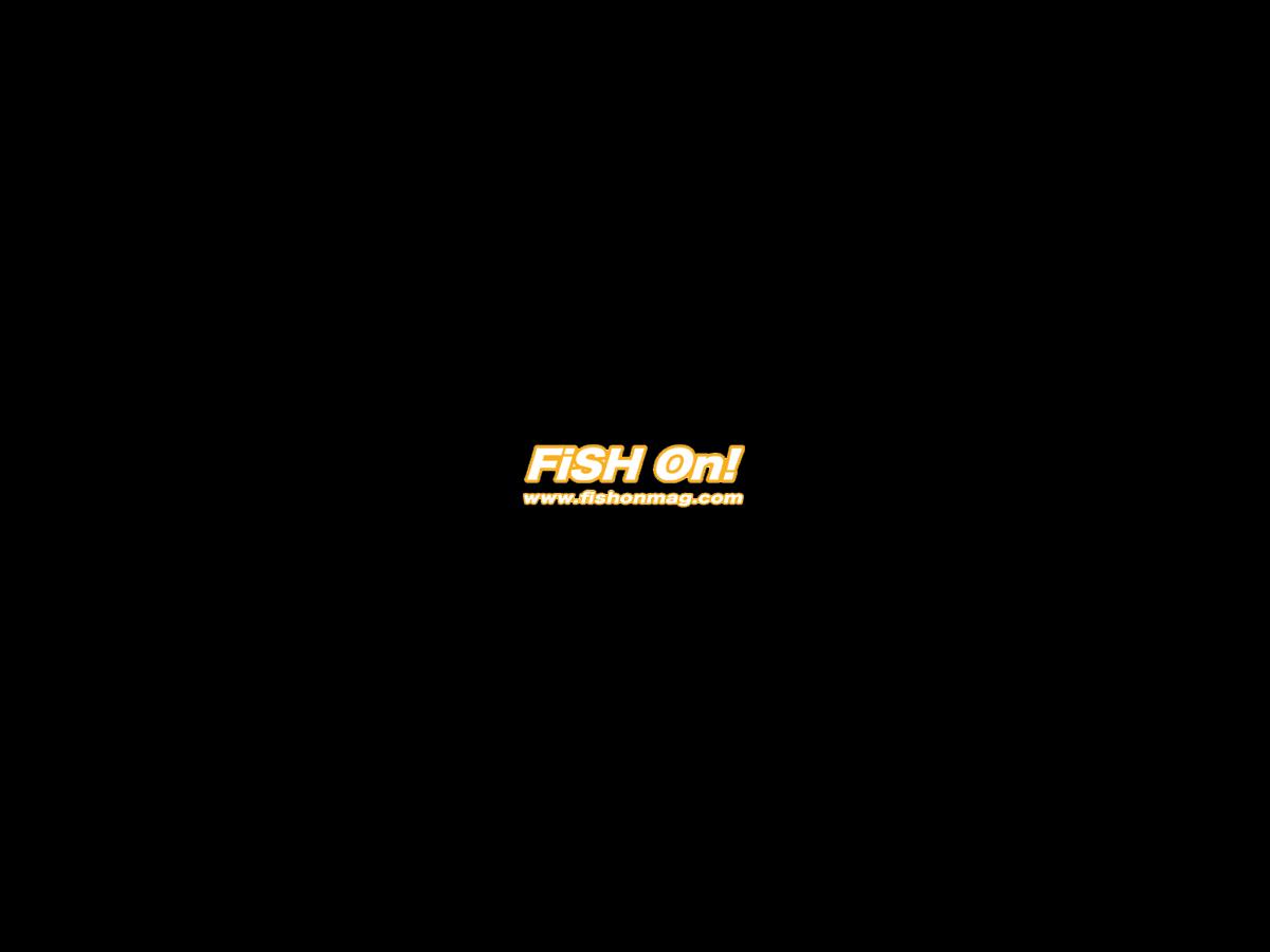 Fish On Mag Blog (SEA)