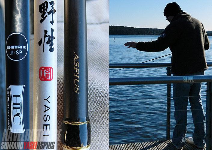 Shimano Yasei Aspius Blank-Design