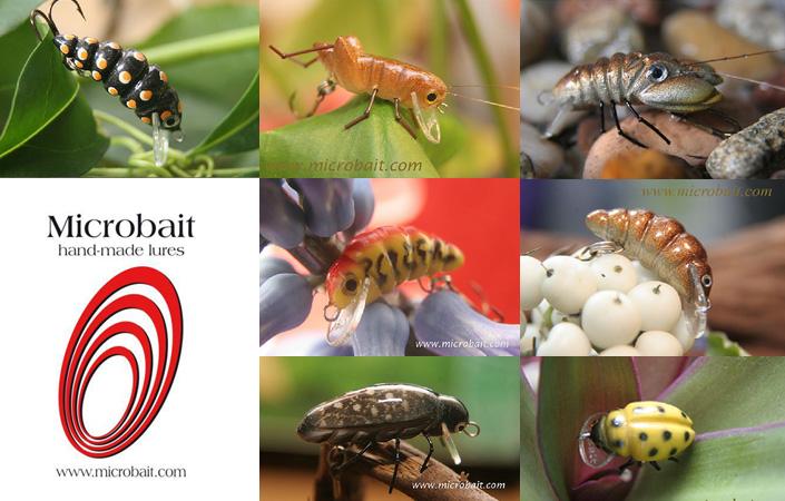 Microbait Katalog