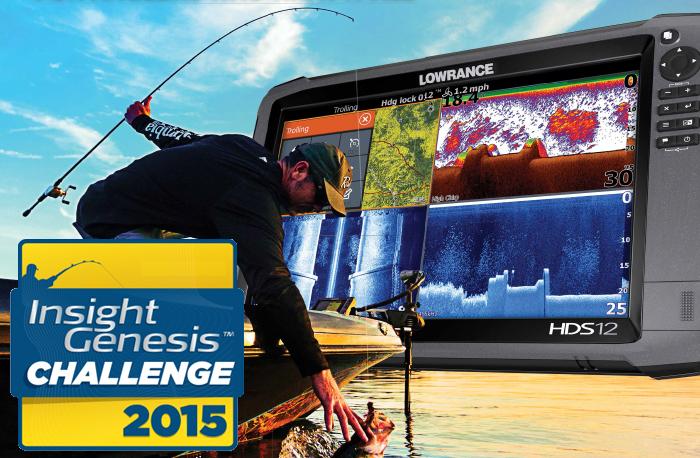 Insight Genesis Challenge 2015