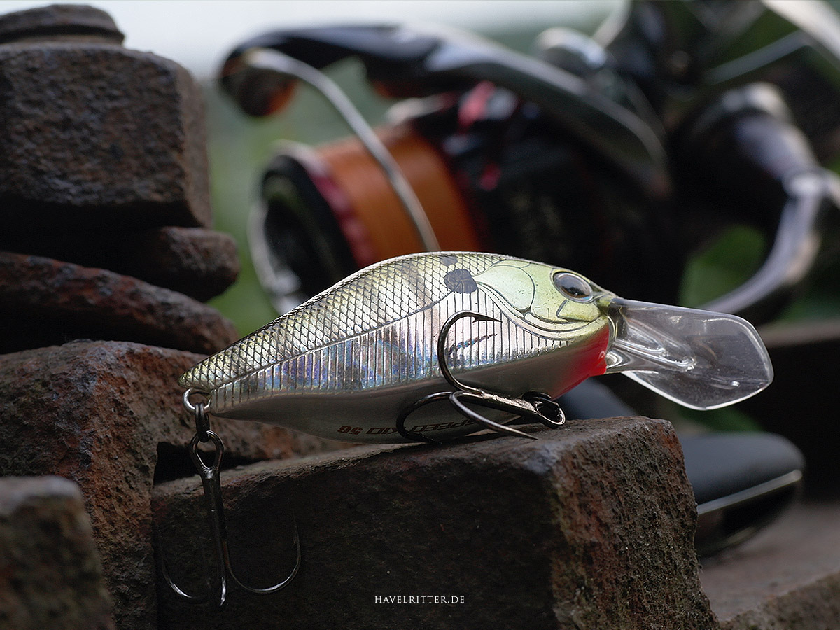 ZipBaits Speed Kid 56 Flatside Crank im Test - BESTANDEN!