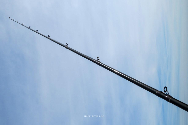 Tailwalk Fullrange C70M/G - Ringe / Beringung