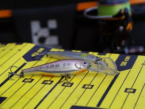ZipBaits Trick Shad 70 SP im Test
